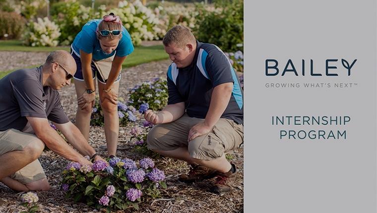 Internships at Bailey Nurseries
